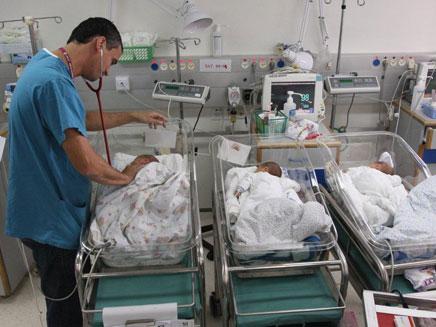 """הפגייה בבית החולים רמב""""ם (צילום: פיוטר פליטר)"""