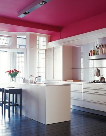 תקרה בצבע יין (צילום: מתוך האתר houseandhome.com)