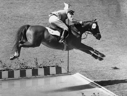 קפיצה עם סוס למרחק  (צילום: אימג'בנק/GettyImages, getty images)
