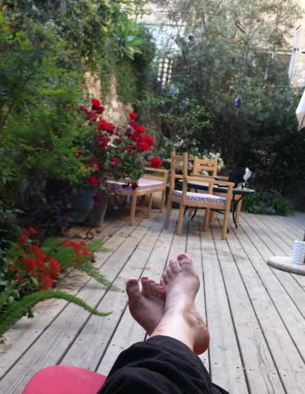גינות בתל אביב, הגינה של נועה ונעם (צילום: נעה מנלה)