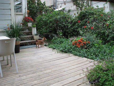 גינות בתל אביב, הגינה של עתר (צילום: עתר ארזי)