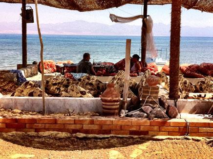 ישראלים על הכוונת, סיני (צילום: גיא צברי, חדשות 2)