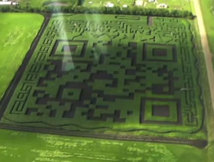 קוד QR על ענק בשדה (קרדיט: kraayfamilyfarm)