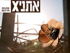 אתניקס, עטיפת אלבום (צילום: רן גולני)