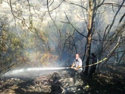 השריפה ליד אבן ספיר (צילום: שי גל)