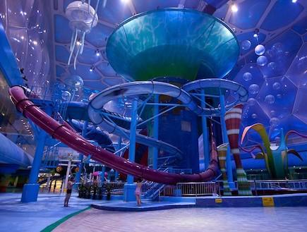 מגלשות סגולות (צילום: מתוך האתר-i-decoracao.com )