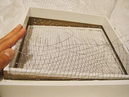 רשת על גבי מסגרת-גינה במסגרת (צילום: דידי רפאלי)