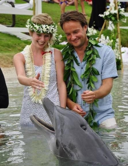 חתונה בהוואי