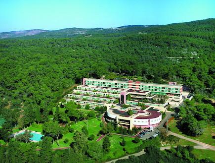 אחוזת יערות הכרמל (צילום: האתר הרשמי)