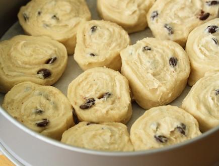 שושני שמרים שוקולד וחלבה - מסדרים בתבנית (צילום: חן שוקרון, אוכל טוב)