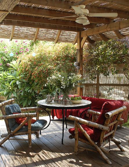 גלית אבינועם כיסאות מעץ במבוק (צילום: אסף הבר)