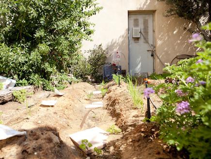 הגינה (צילום: עדו לביא)