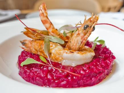 ריזוטו סלק ושרימפס של מסעדת פרונטו (צילום: גל דרן,  יחסי ציבור )