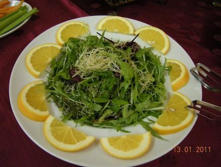 מדבריא סדנת ניקוי בעזרת תזונה אנרגטית