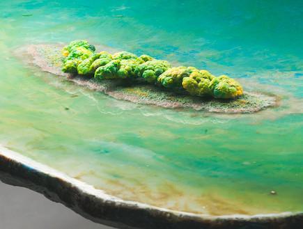 שולחן בריכה gaetano pesce (צילום: john rohrer)