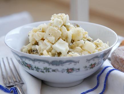 סלט תפוחי אדמה וביצים  (צילום: אפיק גבאי, אוכל טוב)