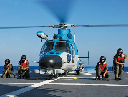 מסוק פנתר על סטיל אתר חיל האוויר (צילום: אתר חיל האוויר)