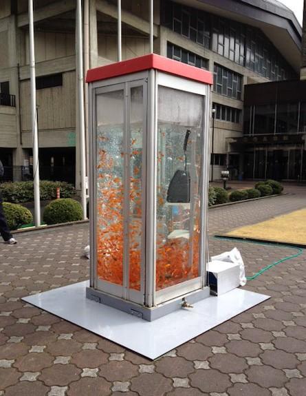 הטלפון הציבורי שהפך לאקווריום