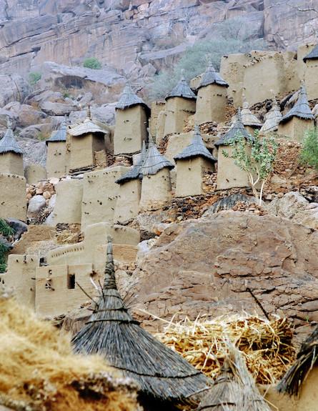 צוקי בנדיאגרה (צילום: אימג'בנק / Thinkstock)