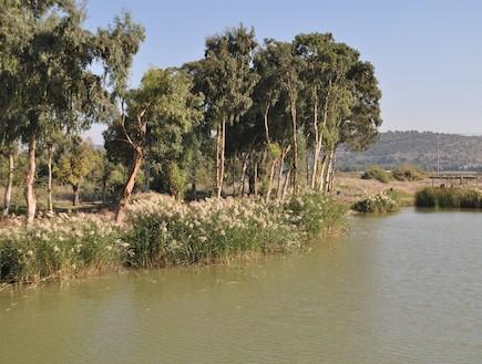 מראה נחל תנינים (צילום: ערן ודוד גל-אור, מסלולים> להתאהב בארץ מחדש)