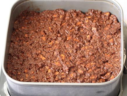 ריבועי שוקולד וקוקוס ללא אפייה - ביסקוויט ושוקולד (צילום: חן שוקרון, אוכל טוב)