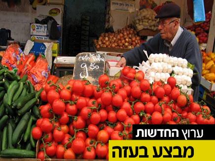 חשש ממחסור בירקות ופירות (צילום: חדשות 2)
