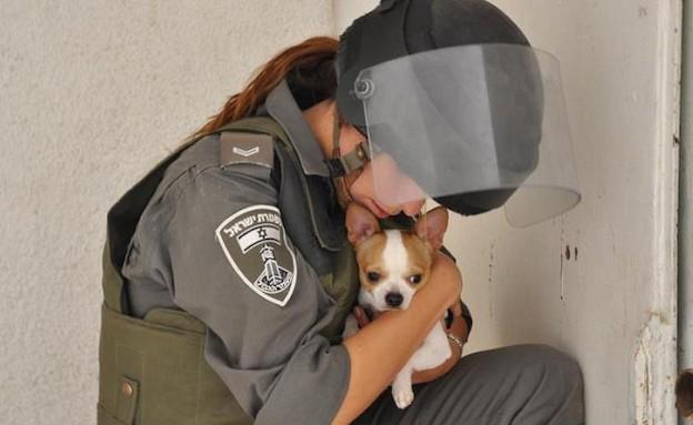שוטרת מחבקת כלב (צילום: דורון אמיר)