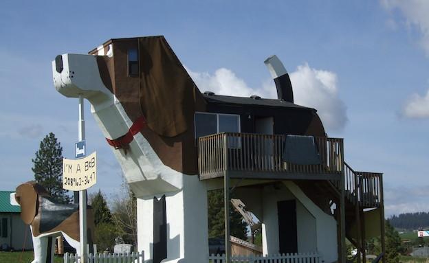 מלון הכלב הנובח, מקור ויקיפדיה