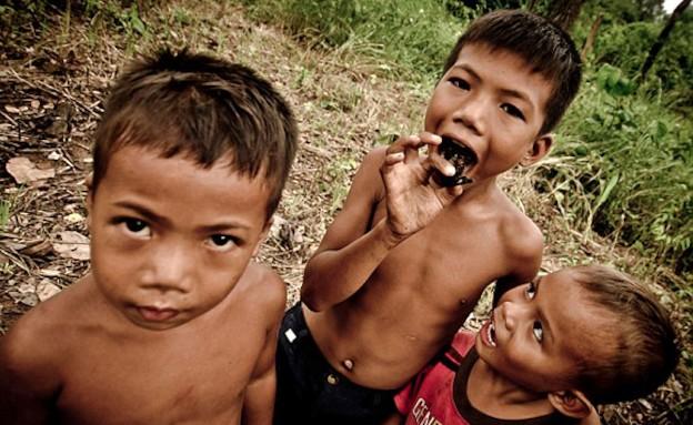 ילדים ציידי טרנטולות (צילום: dailymail.co.uk)