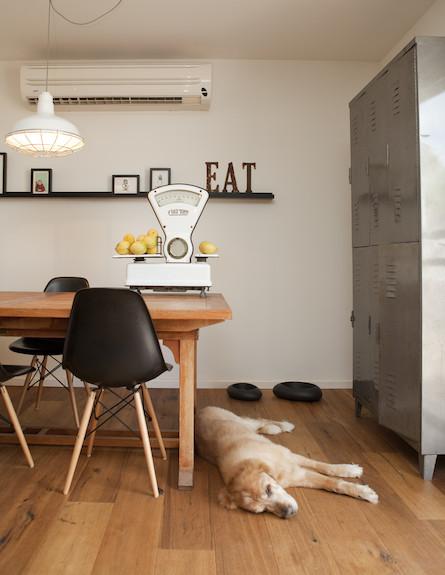 ארונית במטבח (צילום: צילום: הגר דופלט)