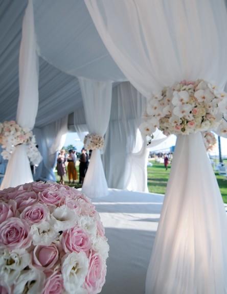 פרחים לבנים וורודים (צילום: הילית גורדון)