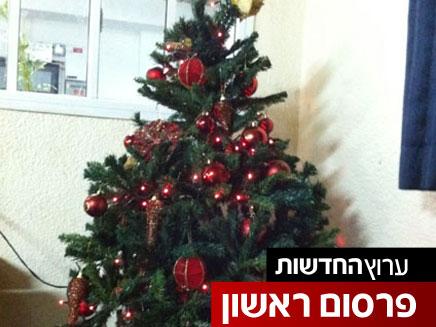 """""""פגיעה בחופש הדת"""". העץ שהוסר (צילום: חדשות 2)"""