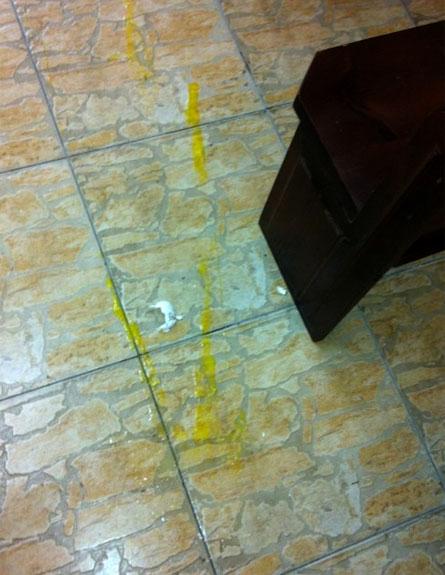 ביצים נזרקו בכנסייה (צילום: חדשות 2)
