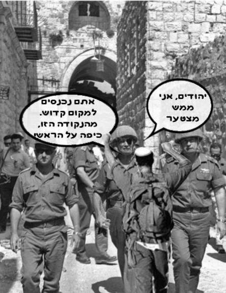 מם הבית היהודי