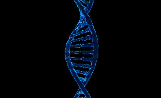 DNA (צילום: Thinkstock)