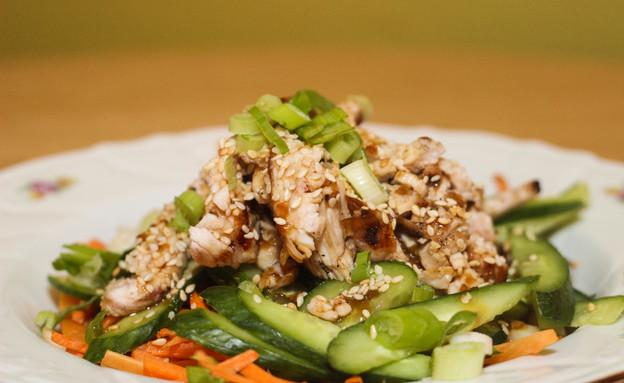 סלט עוף מלפפונים (צילום: מסעדת פליקנו, רעננה)