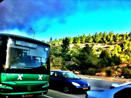 שריפה באוטובוס אגד בכביש 1 (צילום: גיא צברי)