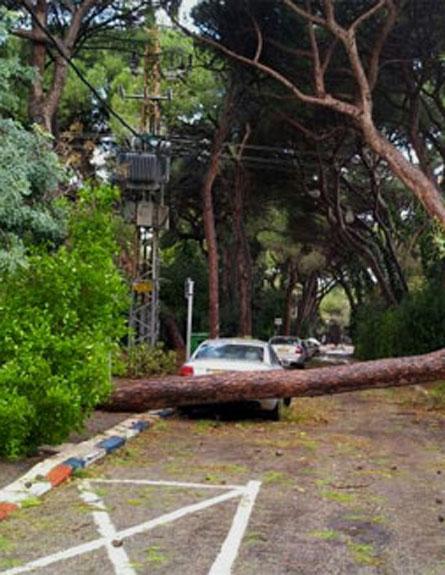 נזקי מזג האוויר ברחבי הארץ (צילום: חדשות 2)