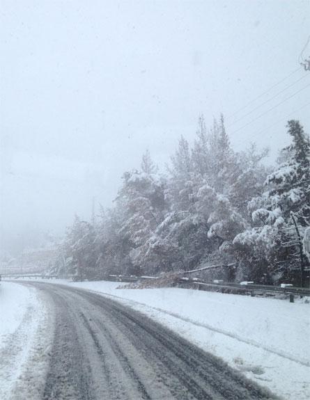 נתקעו בשלג. ארכיון (צילום: אריאל פולק, חדשות 2)