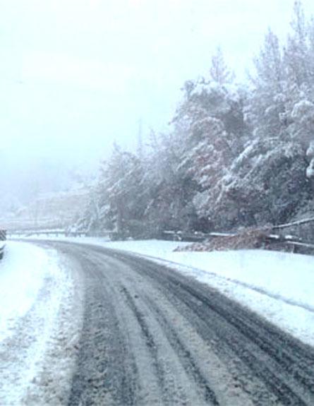 שלג (צילום: חדשות 2, רויטרס)