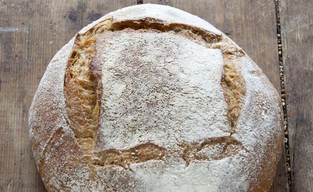 לחם כוסמין של מיקי שמו - מוכן (צילום: דן לב, אוכל טוב)