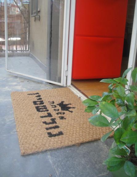 איקאה שטיח כניסה, סופי2 (צילום: דידי רפאלי)