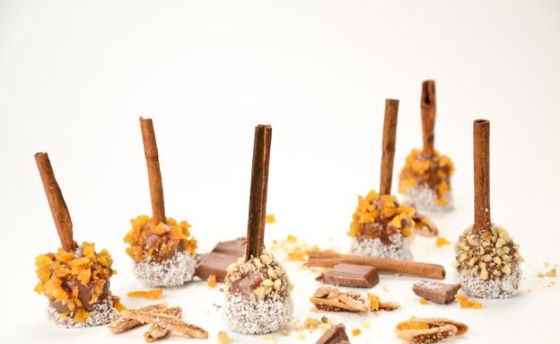כדורי שוקולד ופירות יבשים (צילום: מכון אברהמסון)