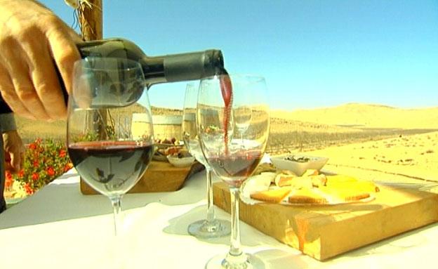 כרם בלב המדבר (צילום: חדשות 2)