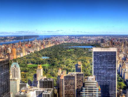 ניו יורק3 - אורטל דהן
