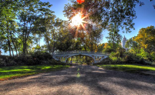 סנטרל פארק - אורטל דהן (תמונת AVI: אורטל דהן)