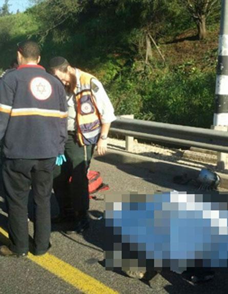 זירת התאונה, הבוקר (צילום: צילום: דוברות הצלה גוש דן)