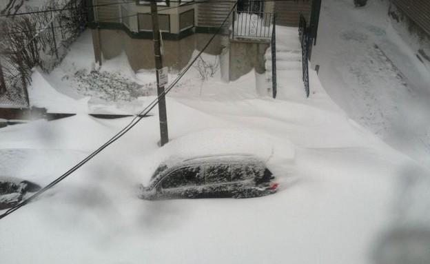 סופת השלג נימו