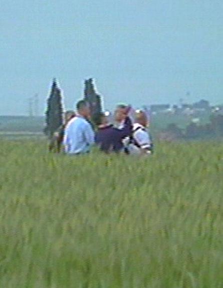זירת התאונה, הבוקר (צילום: חדשות 2)