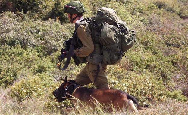 """יחידתן עוקץ ויחידת רוכב שמים באימון (צילום: שי לוי, פז""""ם)"""